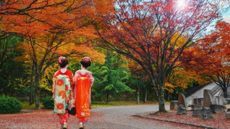 difference between maiko and geisha