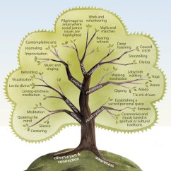 Teaching Tree Diagram Ge Dryer Door Switch Wiring The Of Contemplative Practices Maia Duerr
