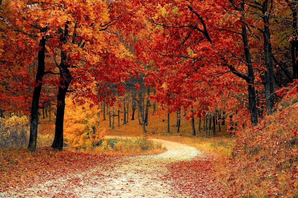 le mete migliori per un viaggio in autunno