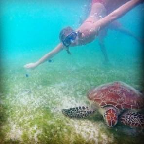 Gili Trawangan Turtle Point