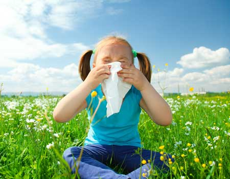 Surviving Allergy Season
