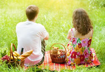 Celebrate International Picnic Day