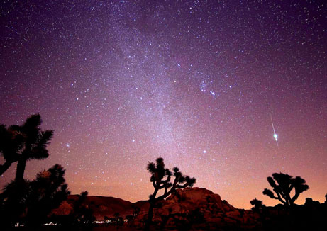 Meteor Watch Day: Shooting Stars