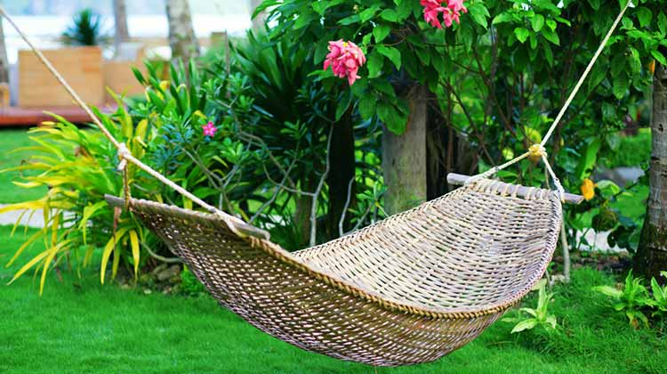 Hammock Day Encourages Relaxation in backyard