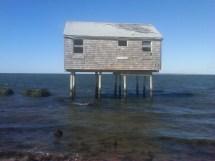 Iii Amagansett Napeague And Hills Bay Beaches