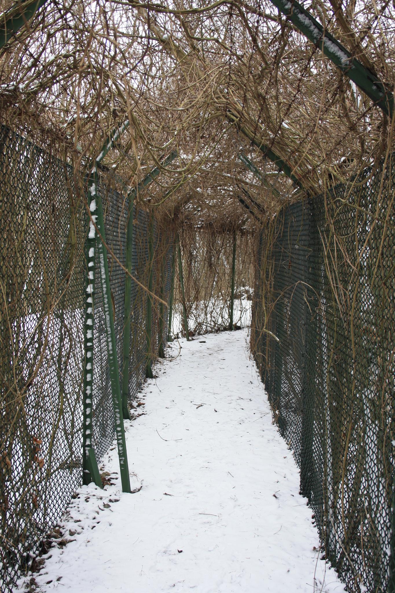 Zaun der NSA Field Station Berlin