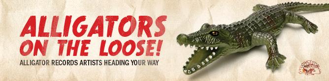 Alligator Records Artists On Tour