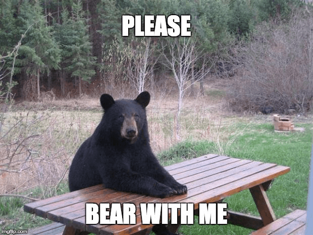 bear with me gif