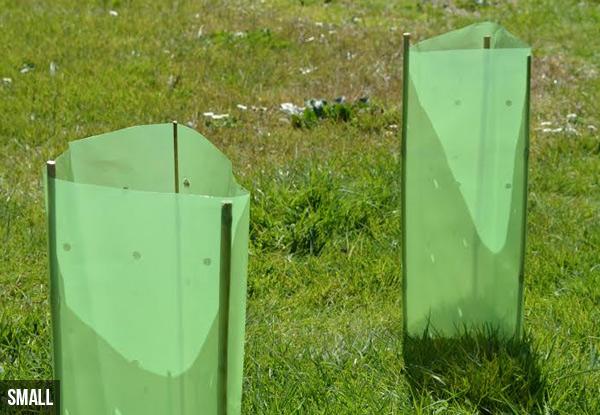 Tree Plastic Protection GrabOne NZ