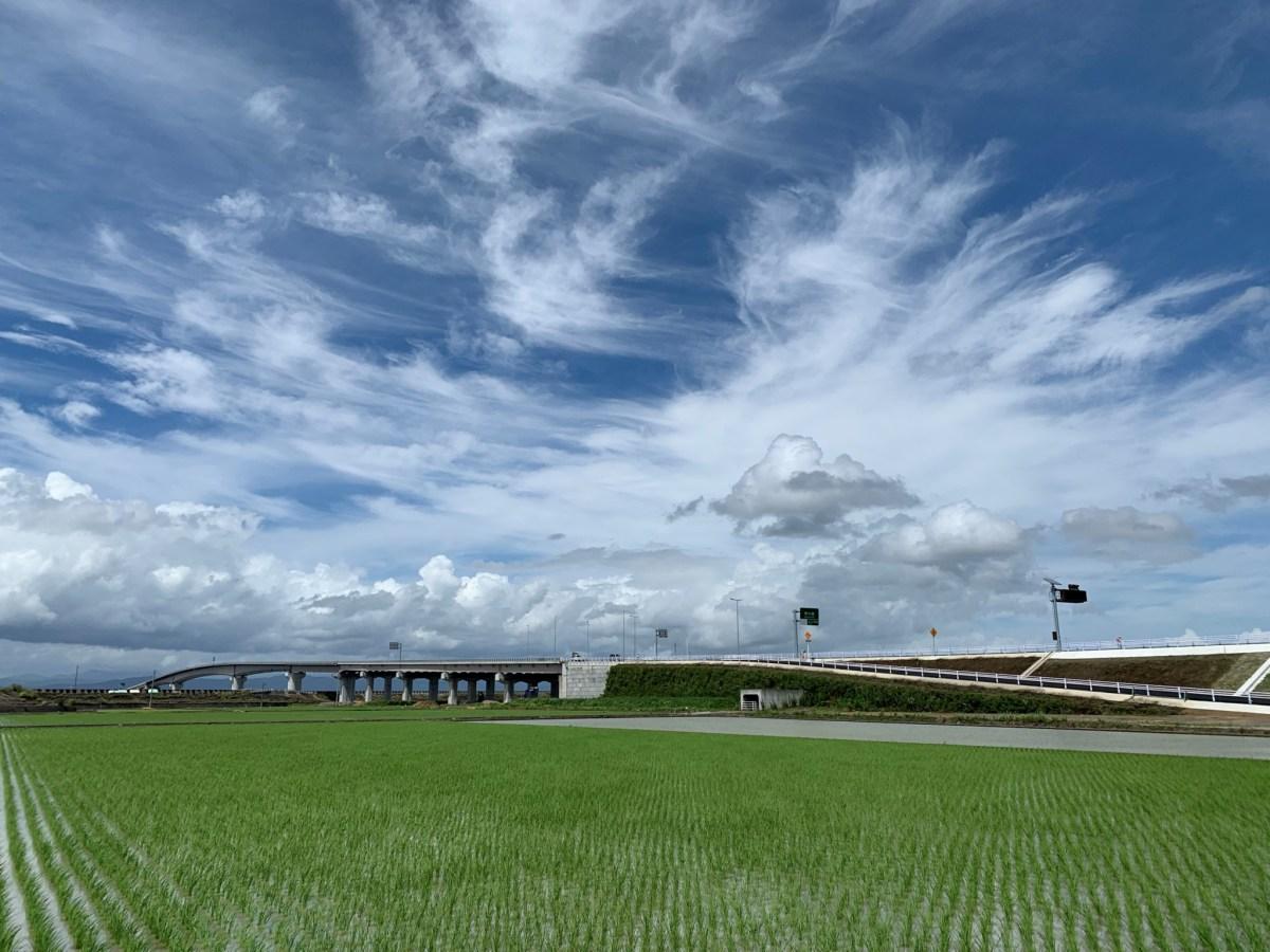 六角川大橋が完成し、沿岸道路開通!
