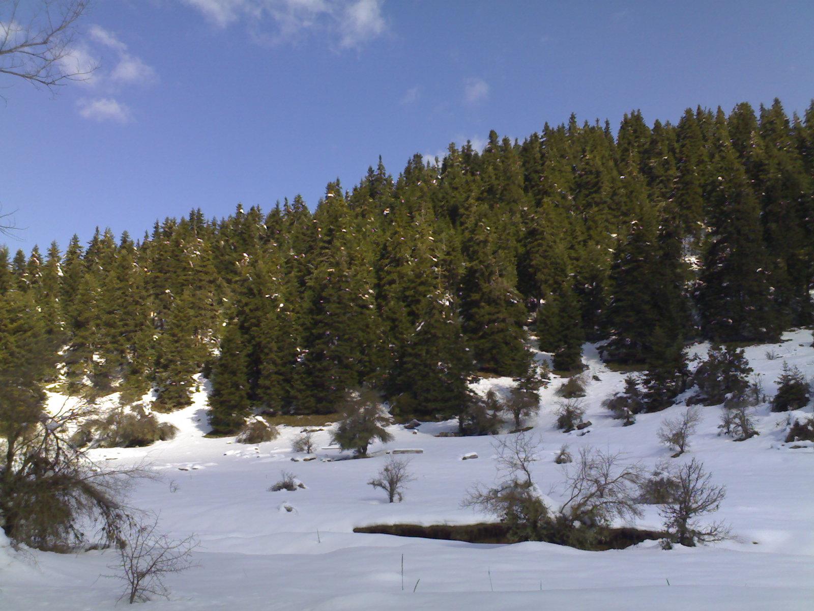 Χειμωνιάτικο τοπίο πριν την Ελάτη