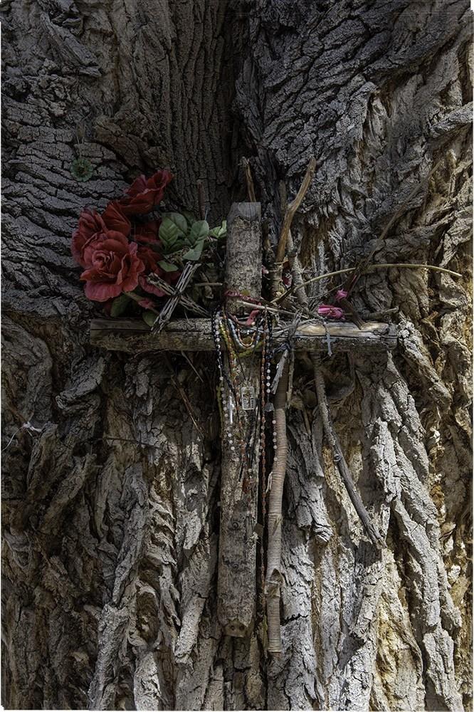 morse 1 treecross