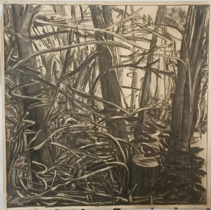 """crichton alan2 """"Found in the Forest"""" 2012 62"""" x 62"""" Charcoal on paperIMG 9343"""