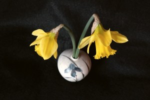 James McCarthy, <i>Daffodils</i>