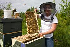 Erin MacGregor-Forbes, Master Beekeeper
