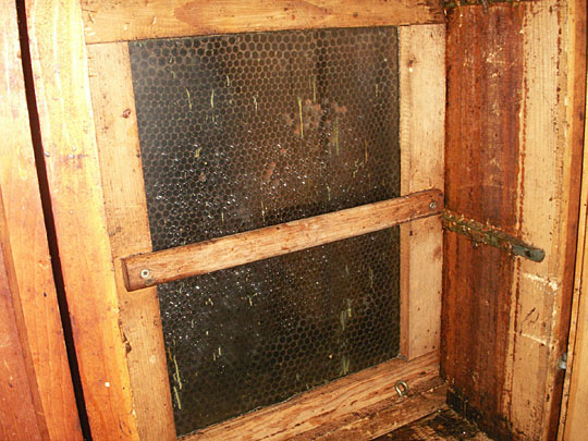 Often the Swiss bee house, like Aheniry's, is a product of the beekeeper's own hands.    The frames are released for inspection by an end frame which otherwise keeps them all snugged up together.