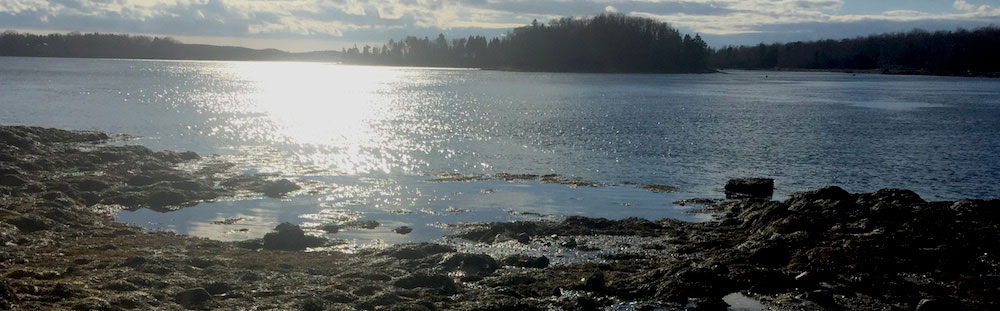 Maine By Foot Ferry Landing Preserve Brooksville