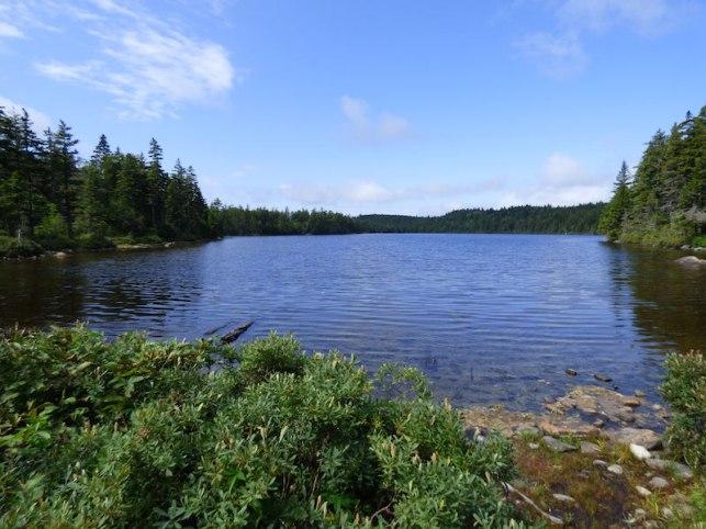 mountain pond 2