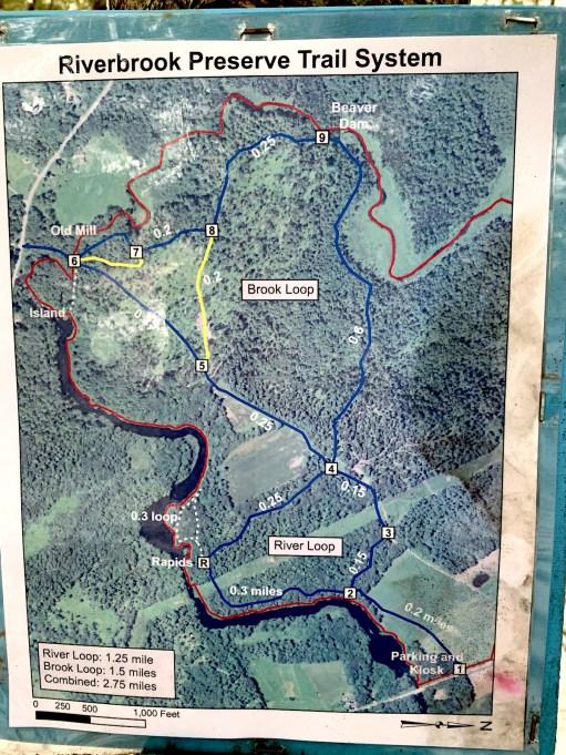 riverbrook-map
