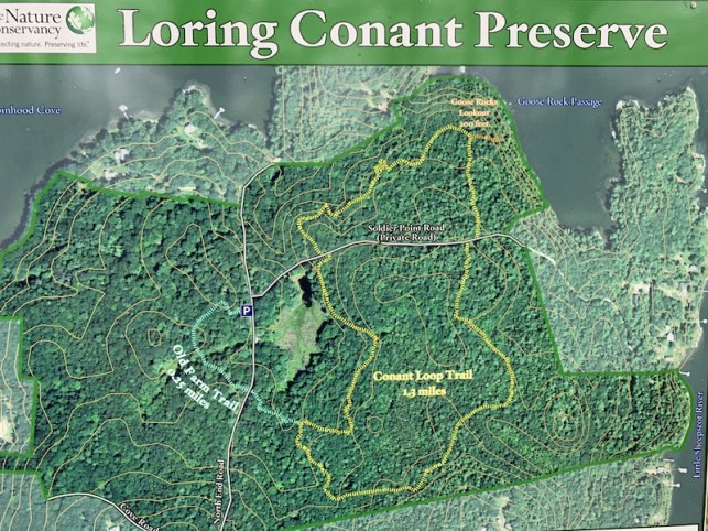 loring_conant1