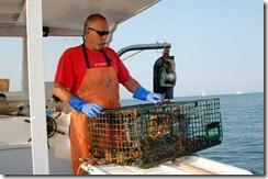 lobsteradventure5