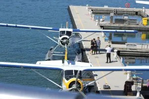 Two of the seaplanes waiting to take you away