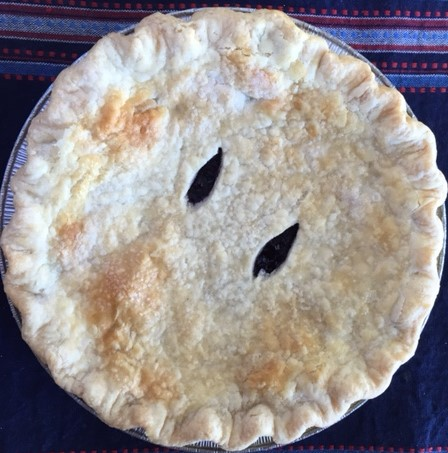 A blueberry pie is always a gift
