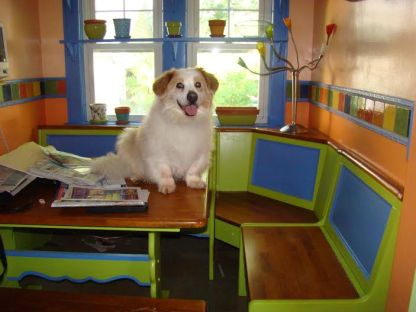 The least scary thing about this story: my dog, Dewey, who loved a good joke.