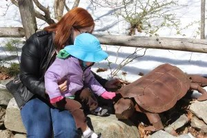 Auntie Lisa and Piper admiring the big turtle.