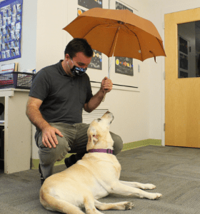 Matt McGreevy and Jelly, a therapy dog that helps out at HBS.