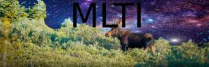 Student Project: Maine Moose