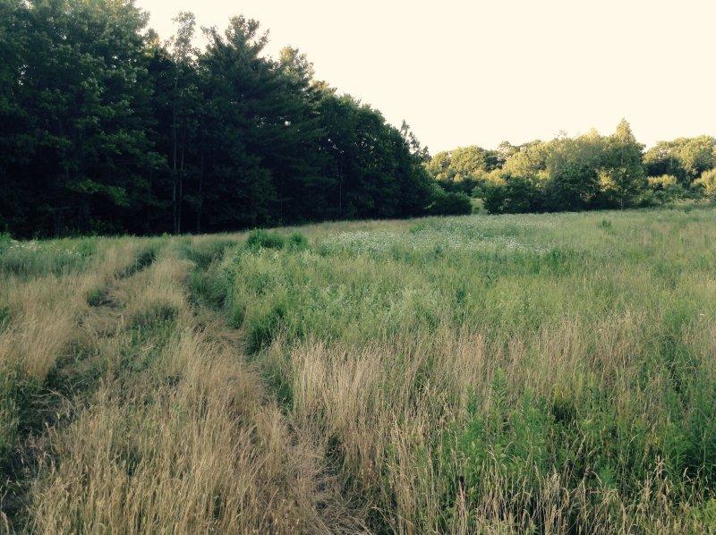 Farm ID 3129