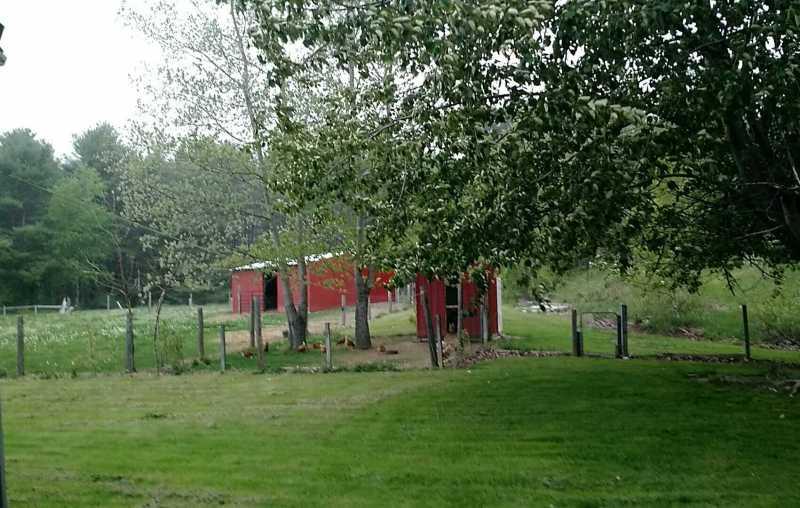 Farm ID 3378