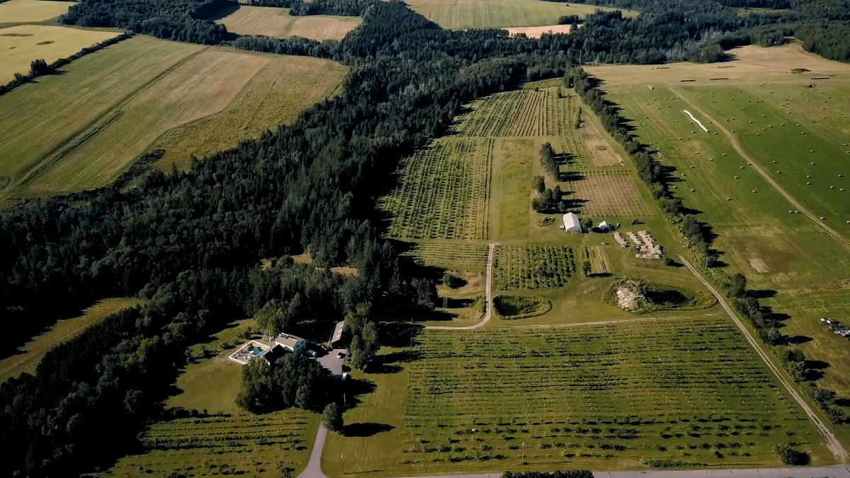 Farm ID 3417
