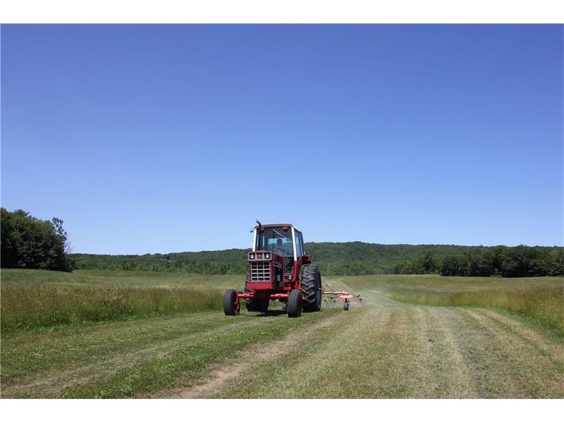 Farm ID 3010