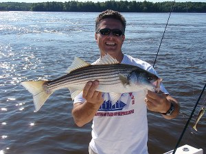 Striped bass registered maine guides for Maine bass fishing