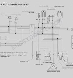 tao tao 125cc go kart wiring diagram trusted wiring diagram rh dafpods co [ 1273 x 970 Pixel ]