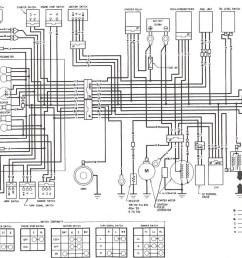 honda 49cc wiring diagram data wiring diagrams [ 1338 x 851 Pixel ]