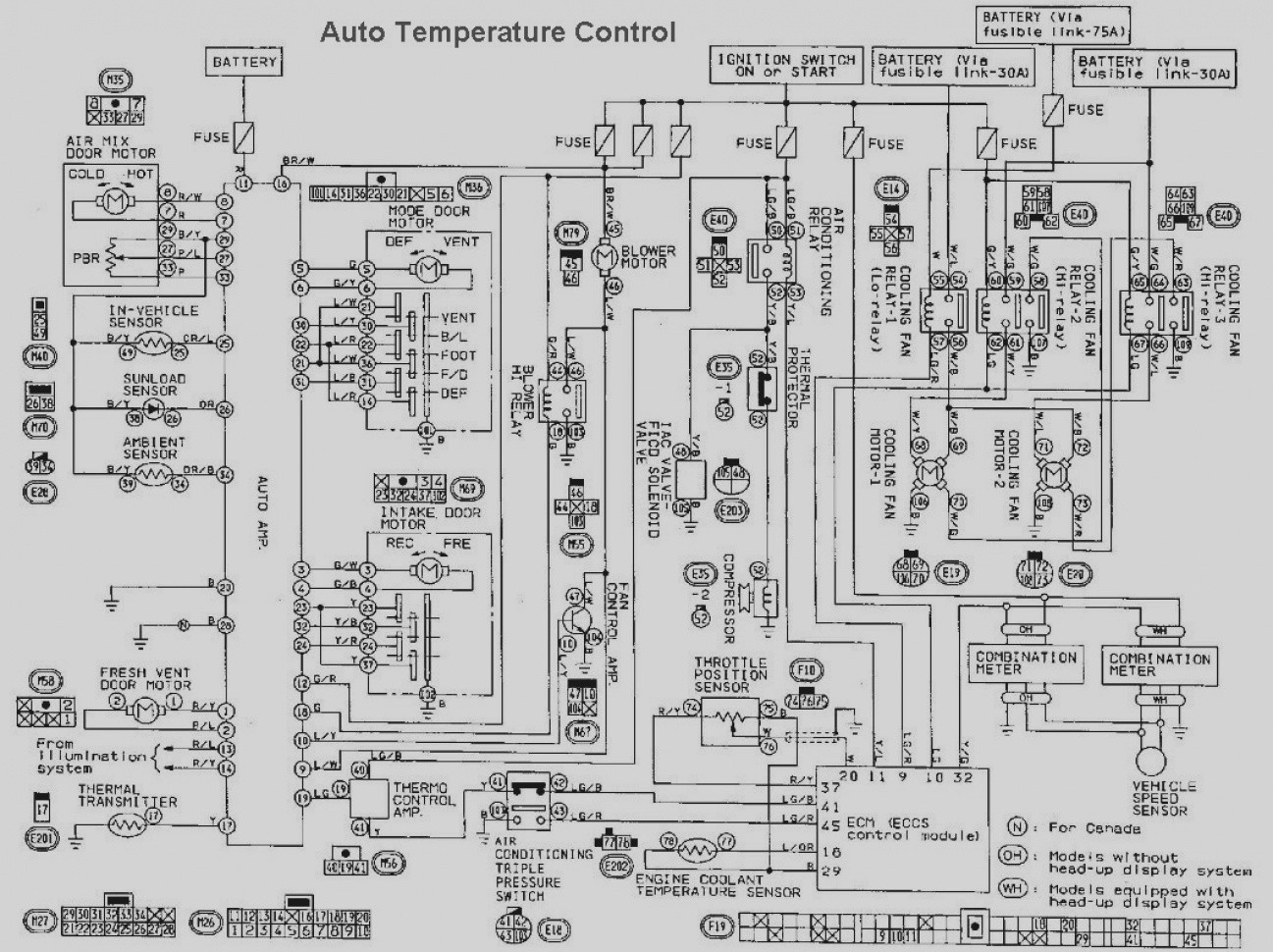 2001 Maxima Wiring Diagram