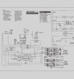 wildcat wiring diagram wiring diagram wildcat 1000 wiring diagram wildcat wiring diagram [ 1204 x 930 Pixel ]