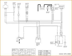 Pit Bike Wiring Diagram 125cc | hobbiesxstyle