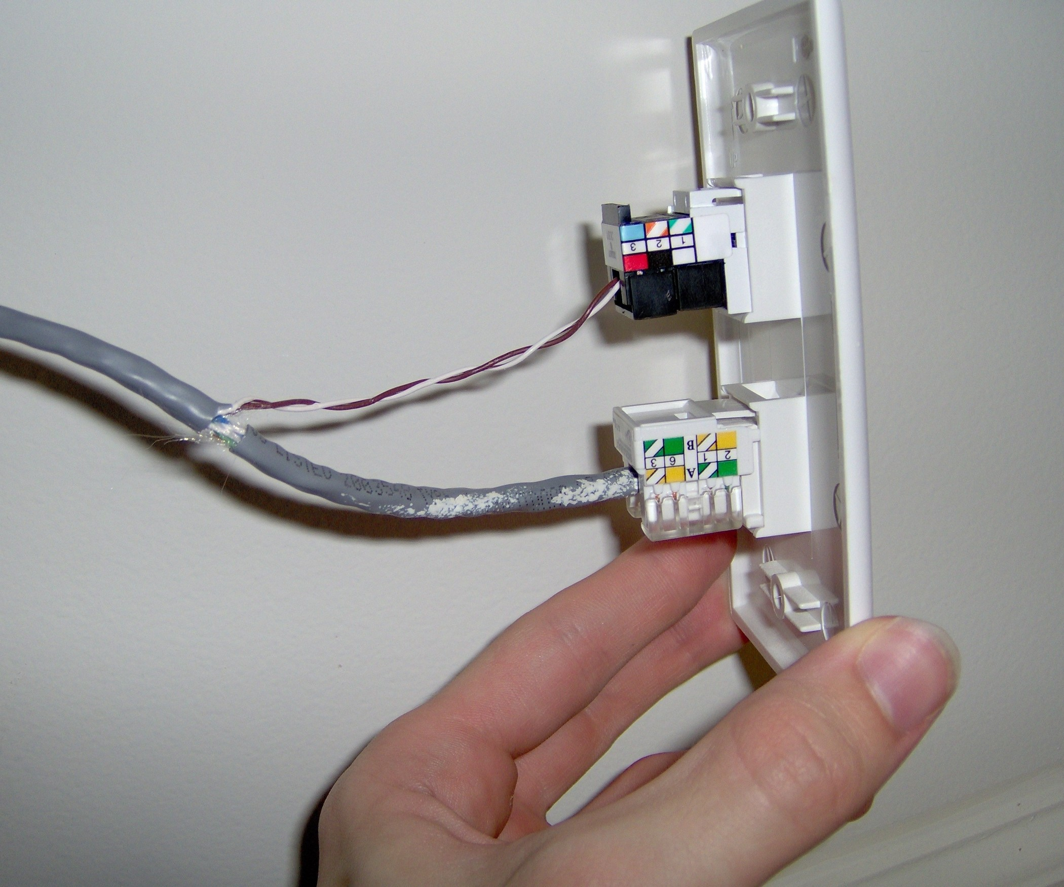 Wiring Cat5e Wall Plate Free Download Wiring Diagrams Pictures