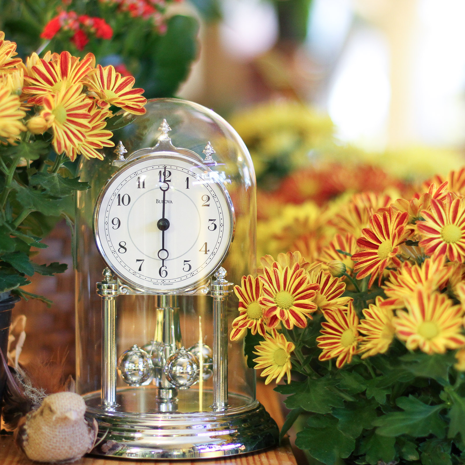 New Hours at Main Floral { Twin Cities Flower Shop }