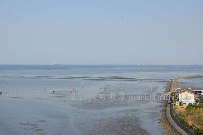 中之島大橋から見た潮干狩り場