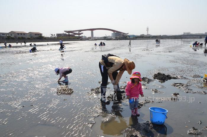 木更津海岸で潮干狩り
