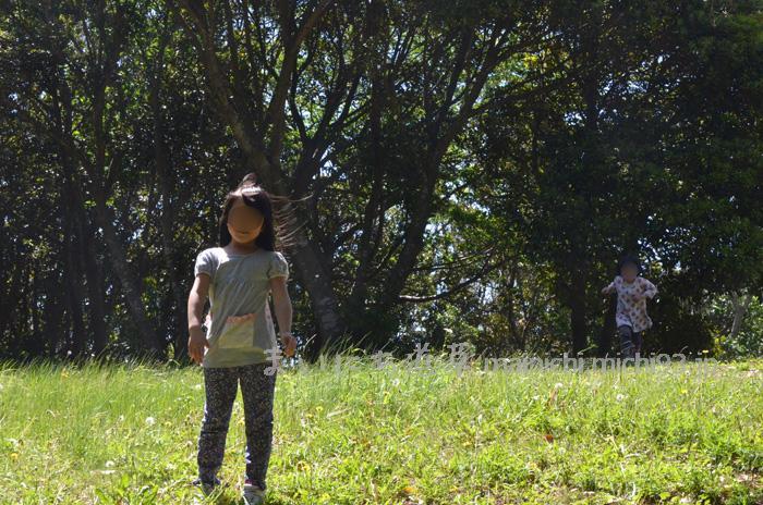 大房岬(たいぶさみさき)キャンプ場