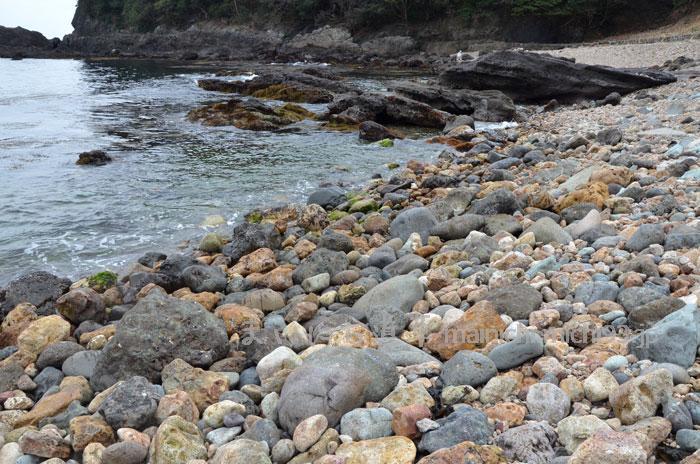 菖蒲沢海岸で石拾い