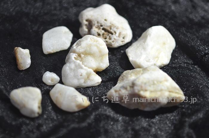 白い石たち