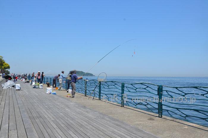 令和元年の横須賀・海辺つり公園