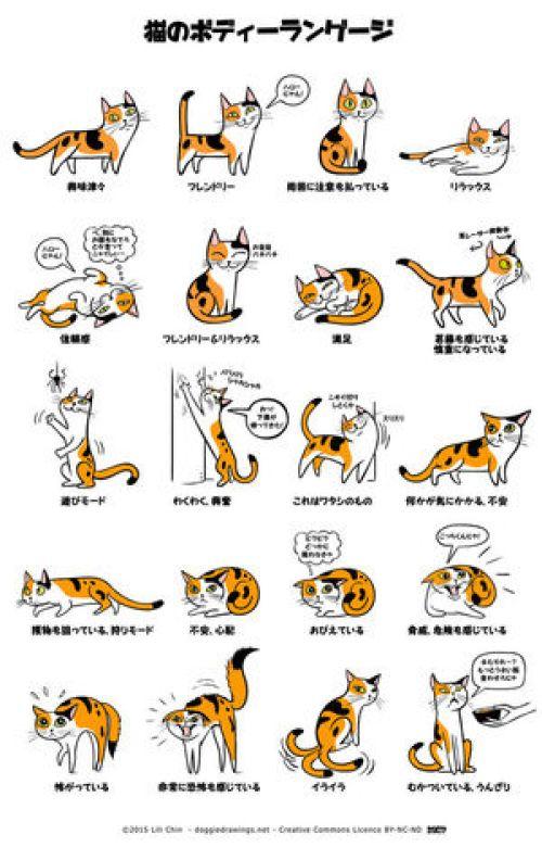 猫の気持ちを表したイラスト